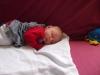 avinadav_shalom_4-24-2012_0