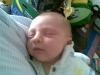 avinadav_shalom_4-3-2012_9-43-38_am_0